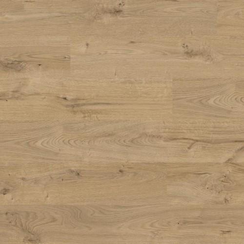 Ламінат Kaindl PREMIUM Oak WILD О270 (Дуб Дикий) 32 кл 8 мм